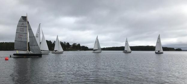 Dalviks race start